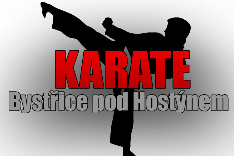 karate new logo